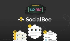 socialbee black friday