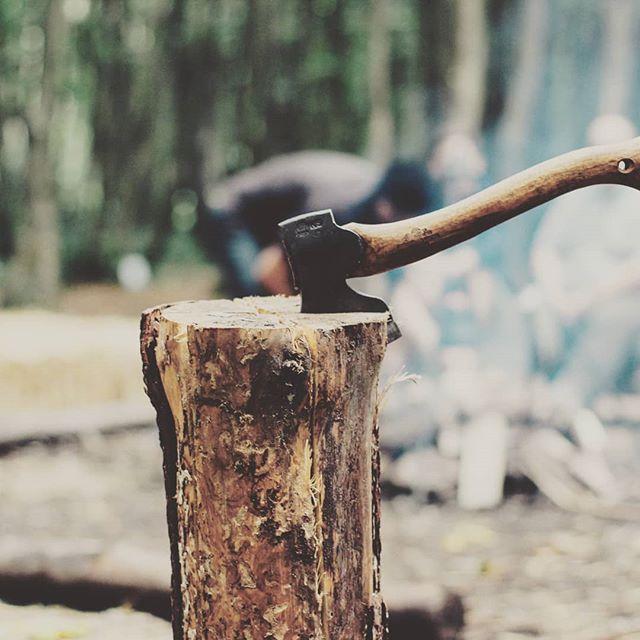 1538413829 - Preparados para el mes de octubre? #tools4us #herramientasindustriales #herramientasprofesionales #pro #tools #hardwork #workhard #bcn #otoño #leña #wood #bosque #montaña #jardin