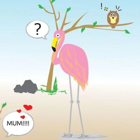 flamingo_thumb