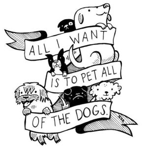 pet all the dogs