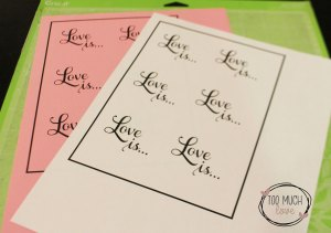 Easy Cricut Print and Cut Hack for DS 5 3 | Too Much Love