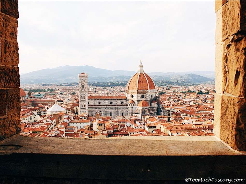 The Duomo of Florence from the Arnolfo Tower