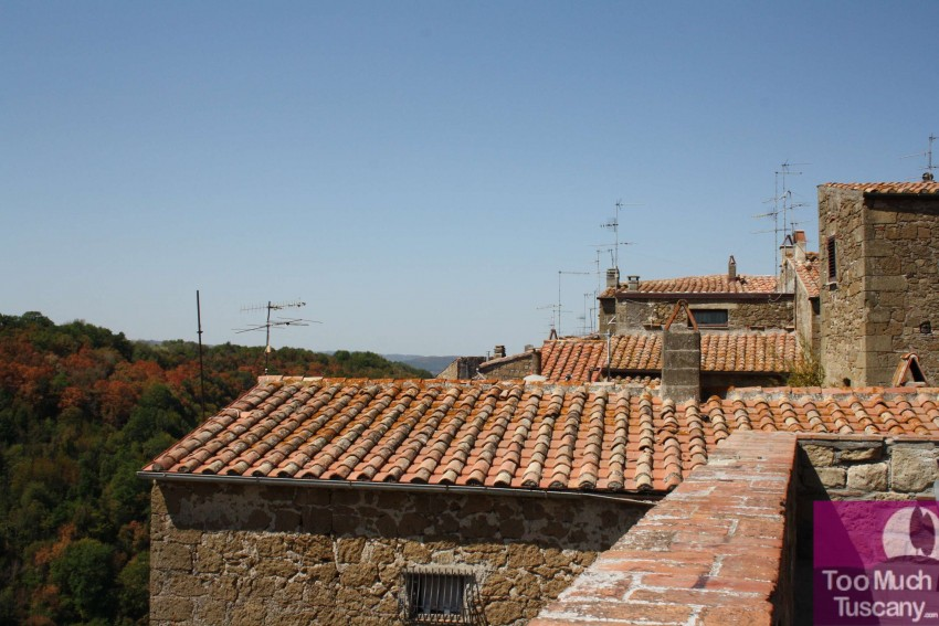 Roofs of Pitigliano
