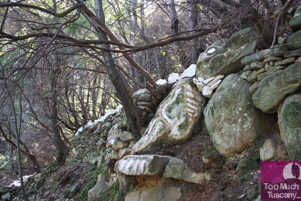 Coccosauro - Art in the woods