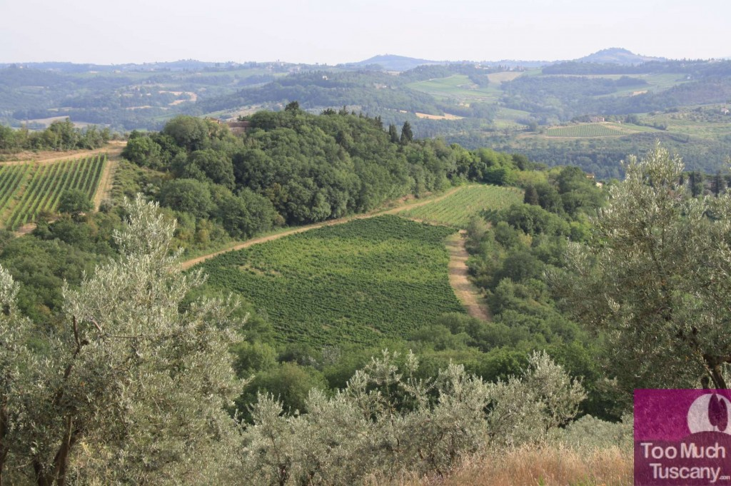 Tuscany Oil's Routes