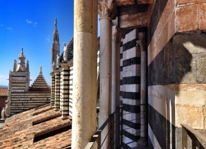 Hidden passage of Siena Cathedral