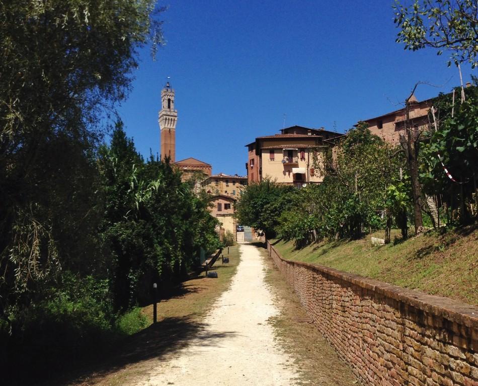 Orto de' Pecci