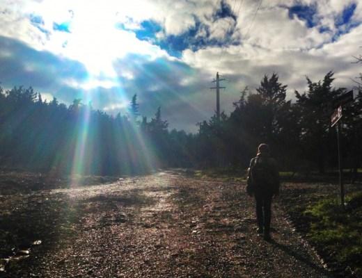 Francigena way near Radicofani