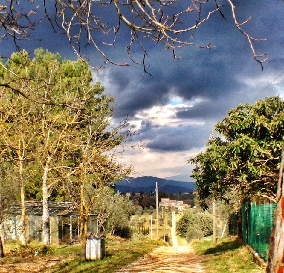Antellino landscape in Florence surroundings
