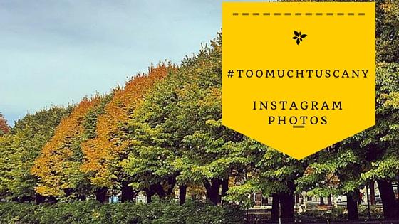 #toomuchtuscany