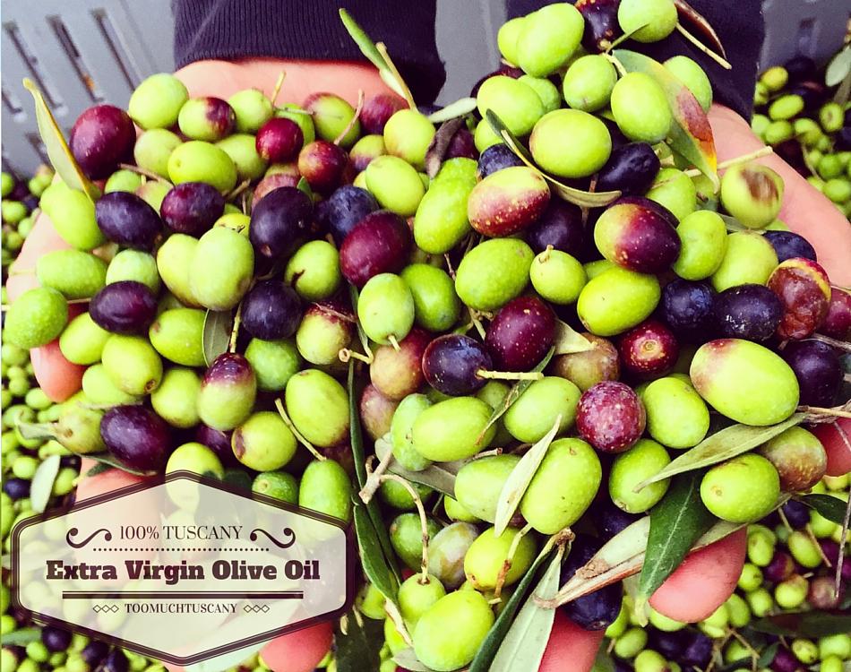 Tuscany extra virgin olive oil