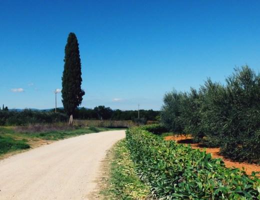Biking in Tuscany