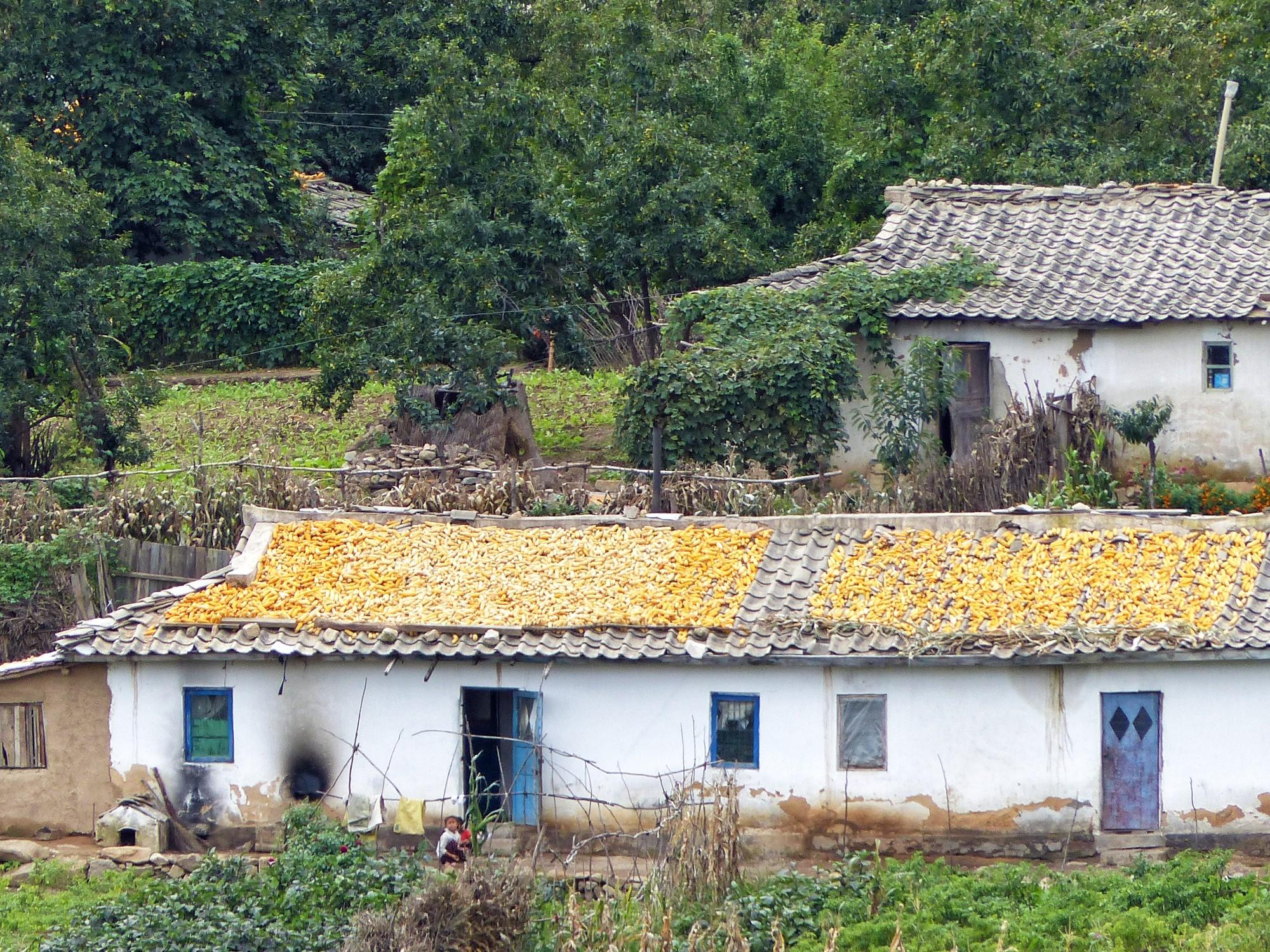 Simple white houses on a farm