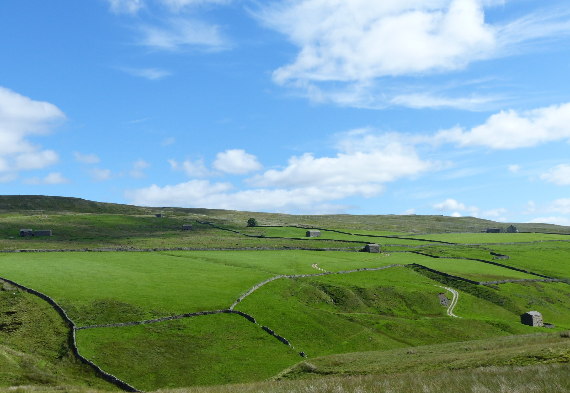 Green fields with barns and blue sky above