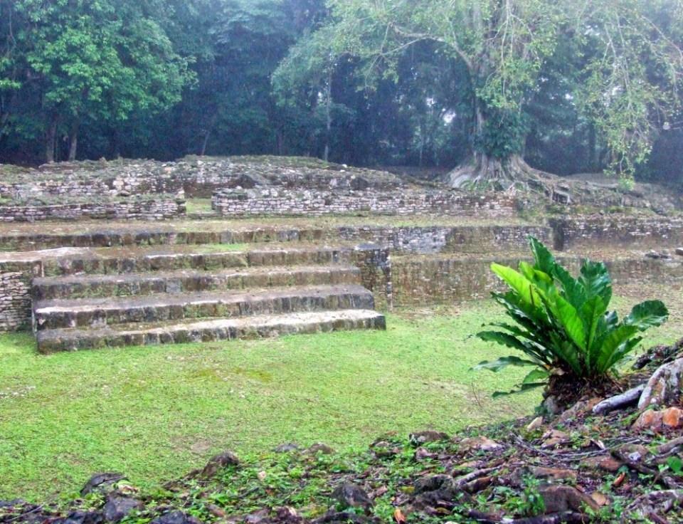 Mayan ruins in a jungle