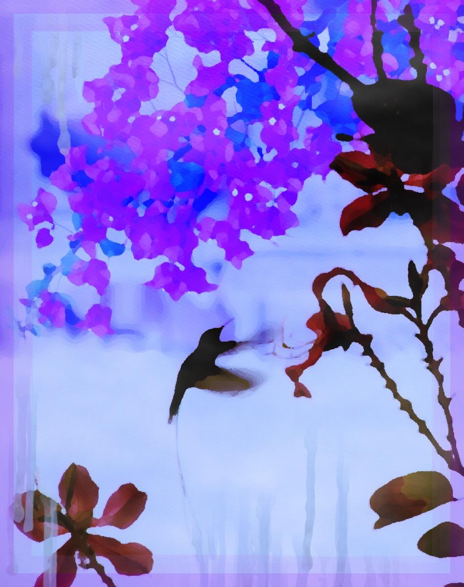 Manipulated photo of hummingbird