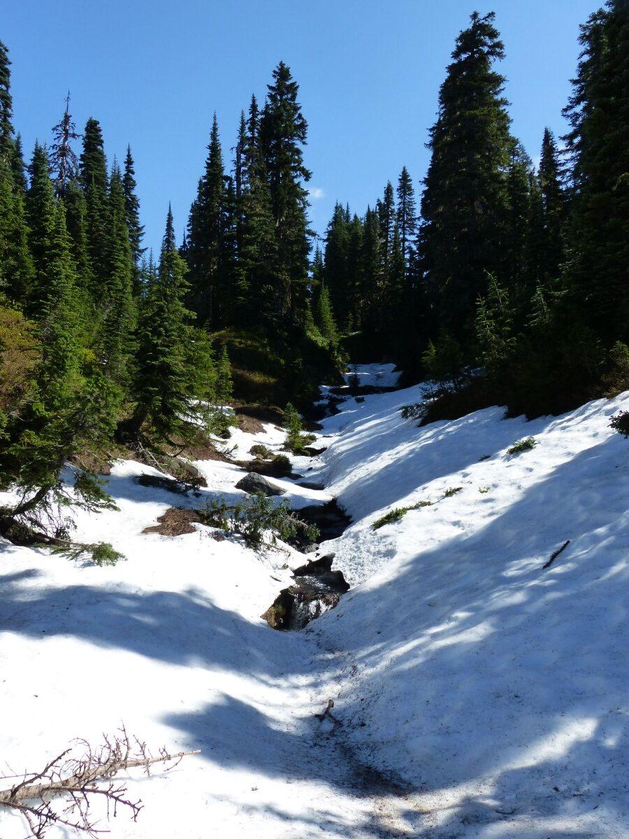 Path through snowy landscape