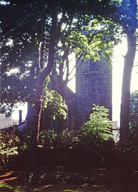 Church glimpsed through trees