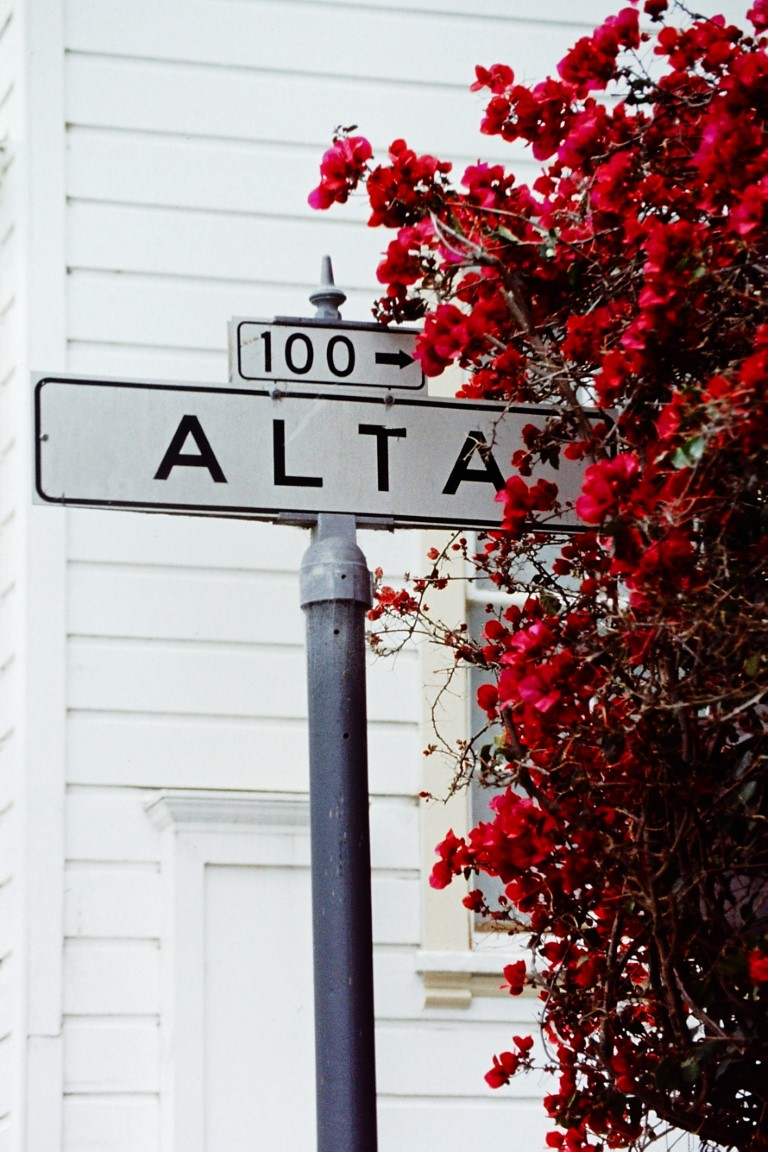 Street sign and red flowers