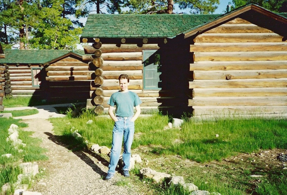 Log cabins with green roofs