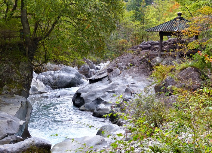 Wooded valley with rocks and stream