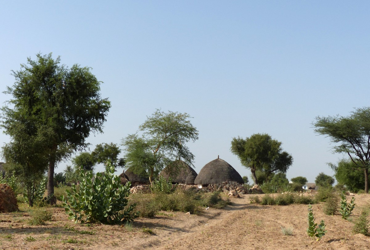Sandy path leading to grass roofed huts