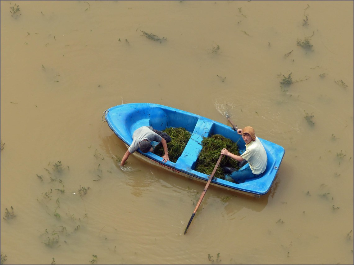 Two men in a rowing boat