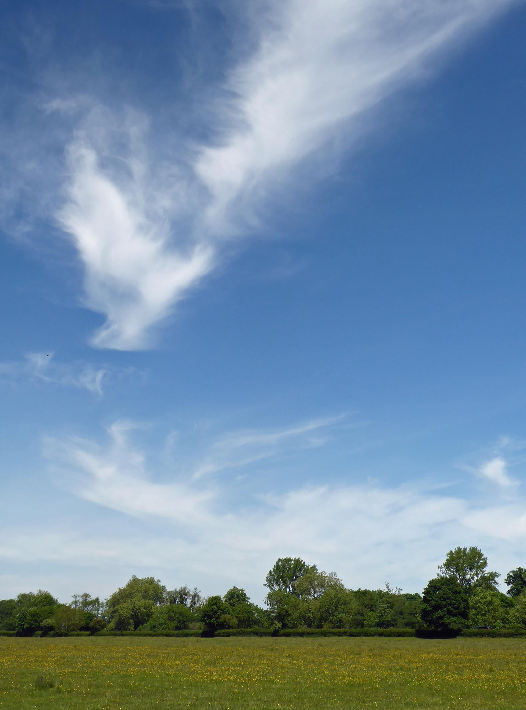 Blue sky, white clouds, green field below
