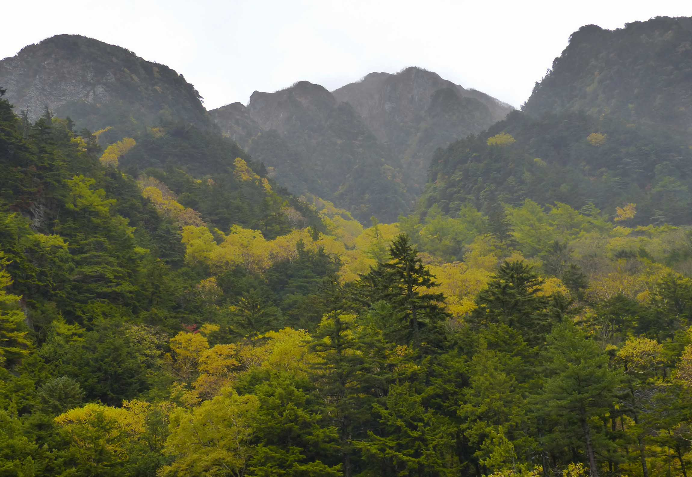 Wooded hillsides with leaves turning yellow