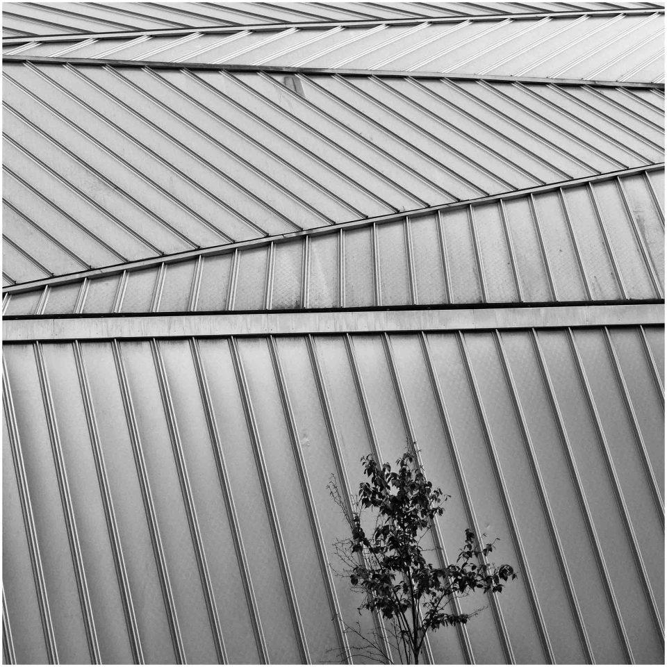Black and white photo of zigzag windows