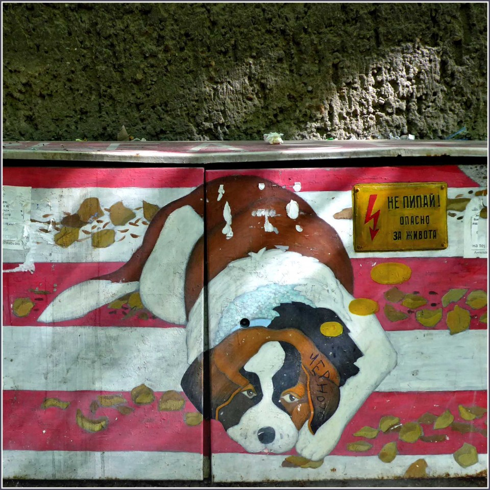 Mural of a dog