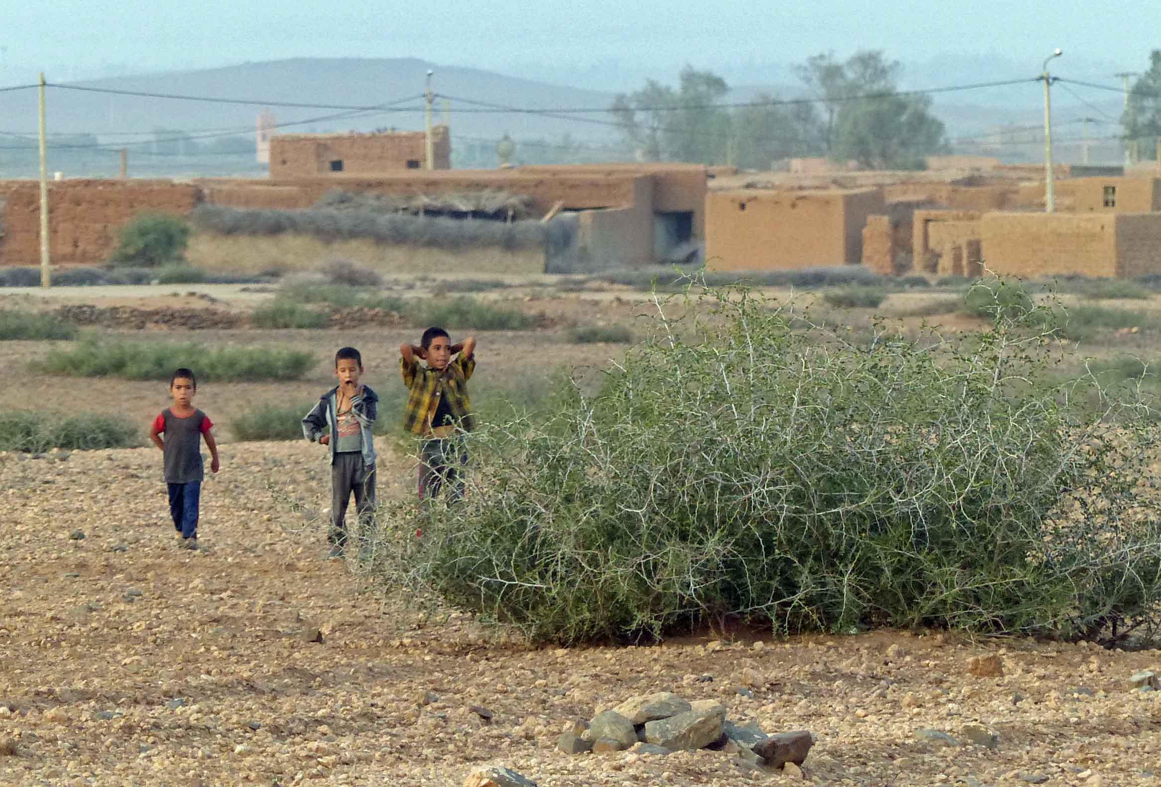 Three small boys by desert village