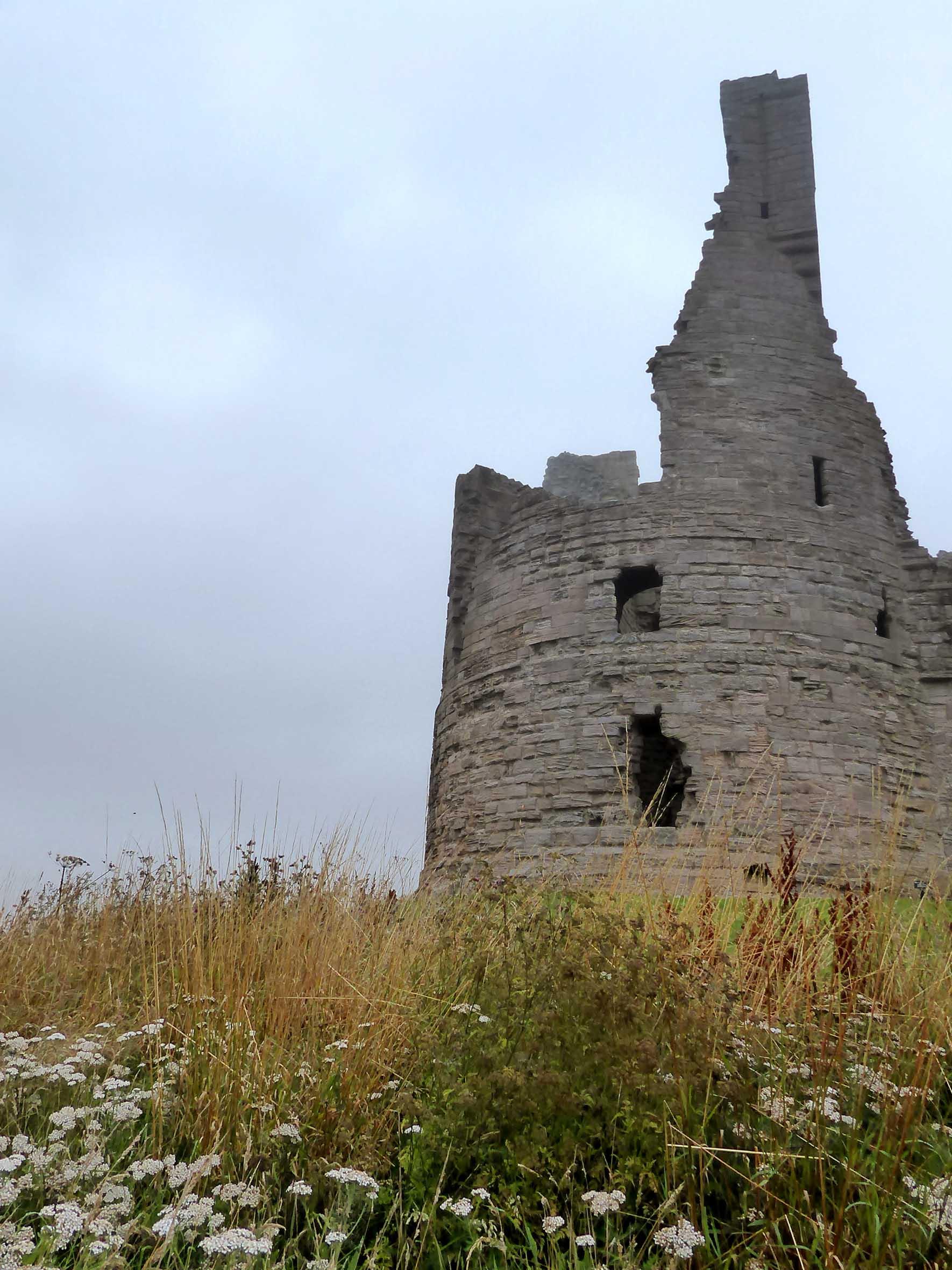 Castle ruins among long grass
