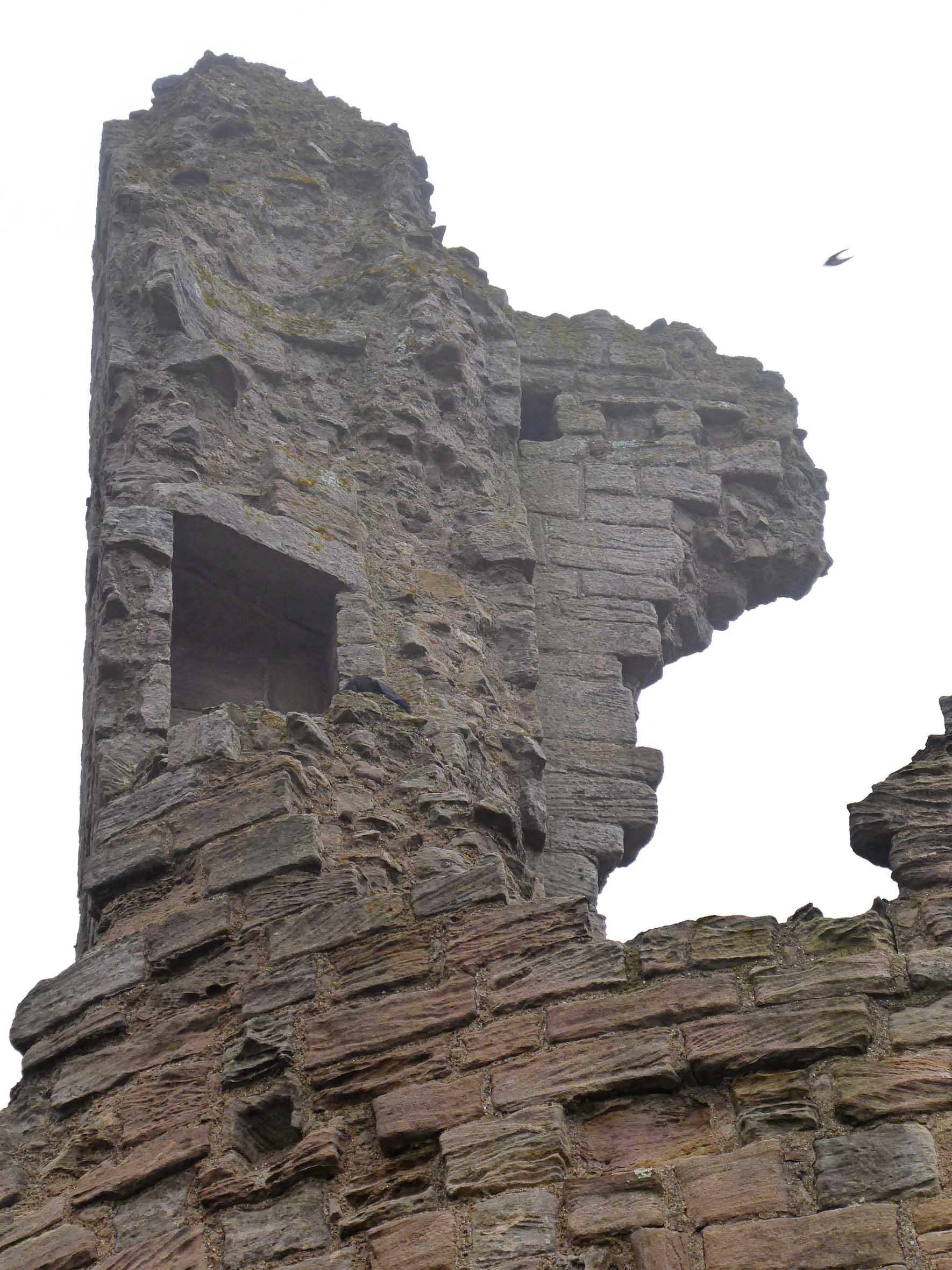 Looking up at ruined wall