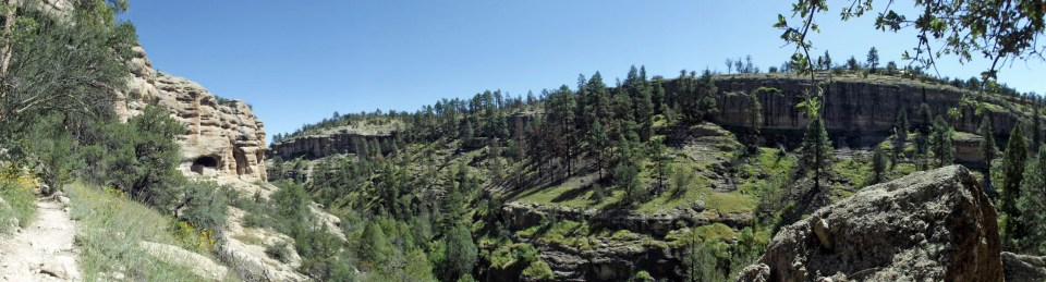 Panorama of deep valley with pine trees and caves