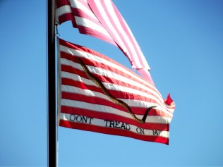 Red and white striped flag with picture of snake