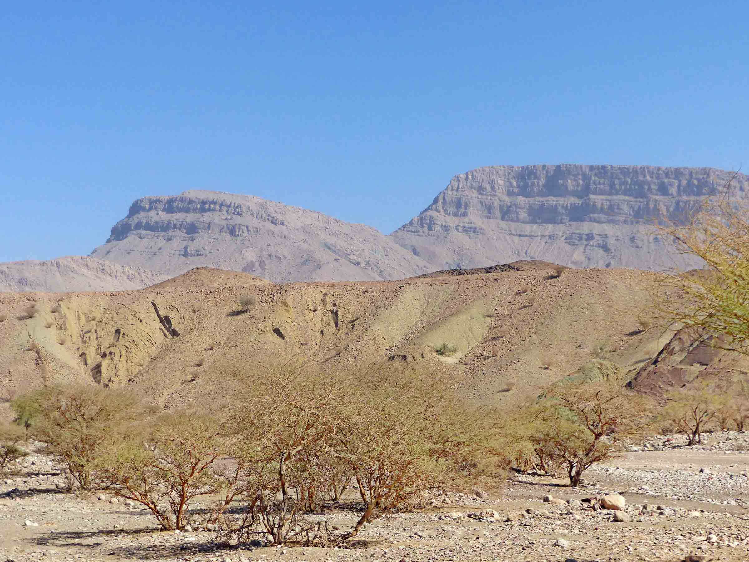 Dry landscape with scrub trees and mountains