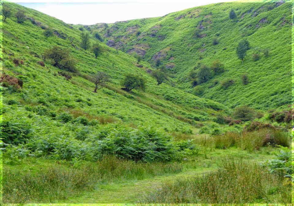 Grassy path between hills