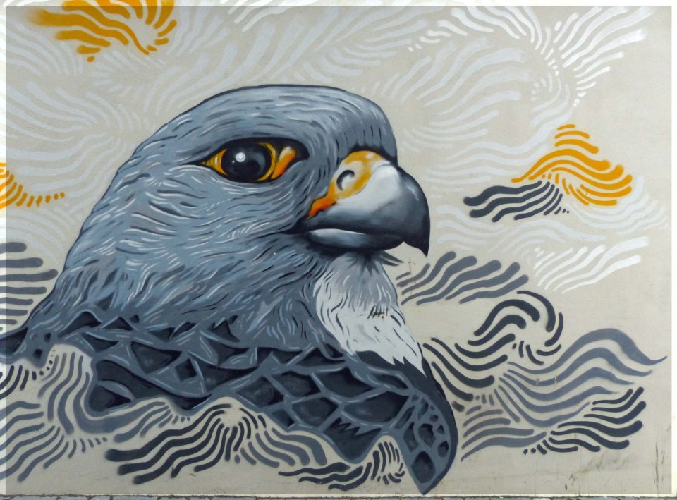 Head of a grey bird painted on a wall