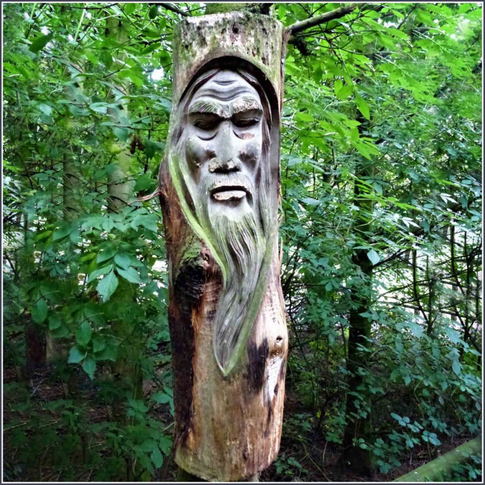 Tree trunk carved into a bearded face