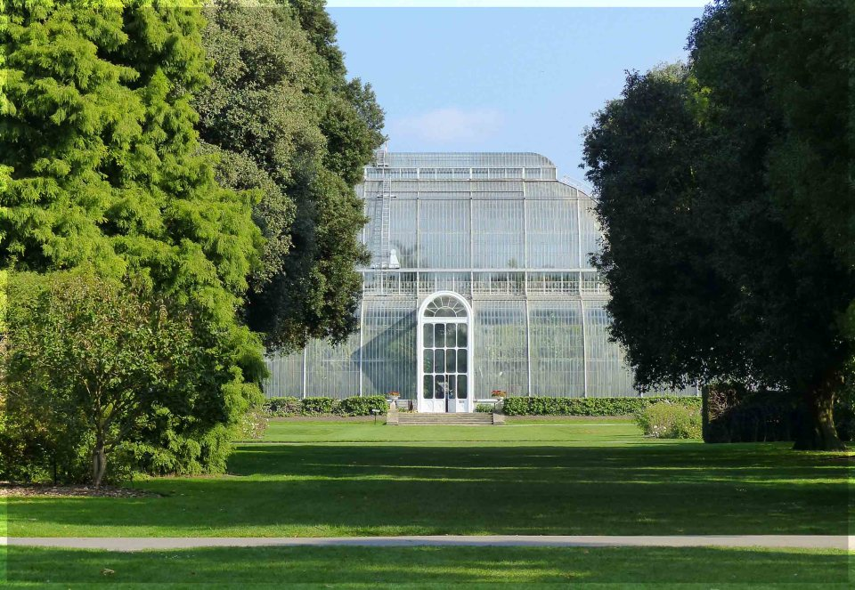 Large glass conservatory seen through trees