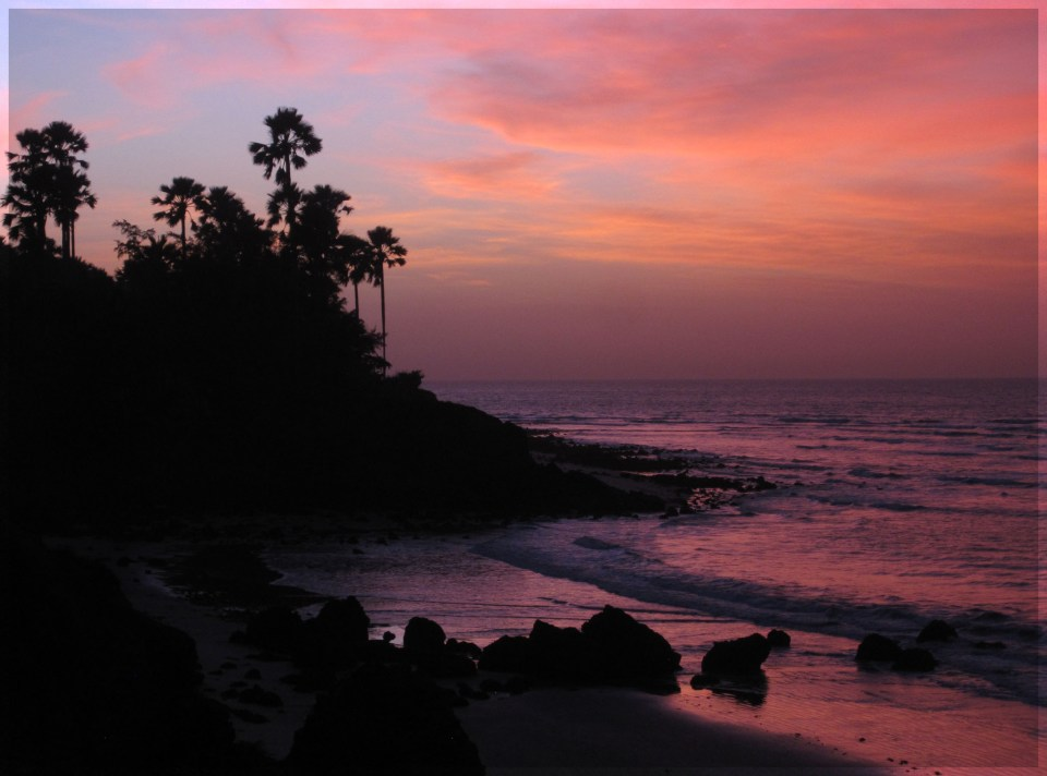 Low cliffs and palm trees silhouetted against the sunset