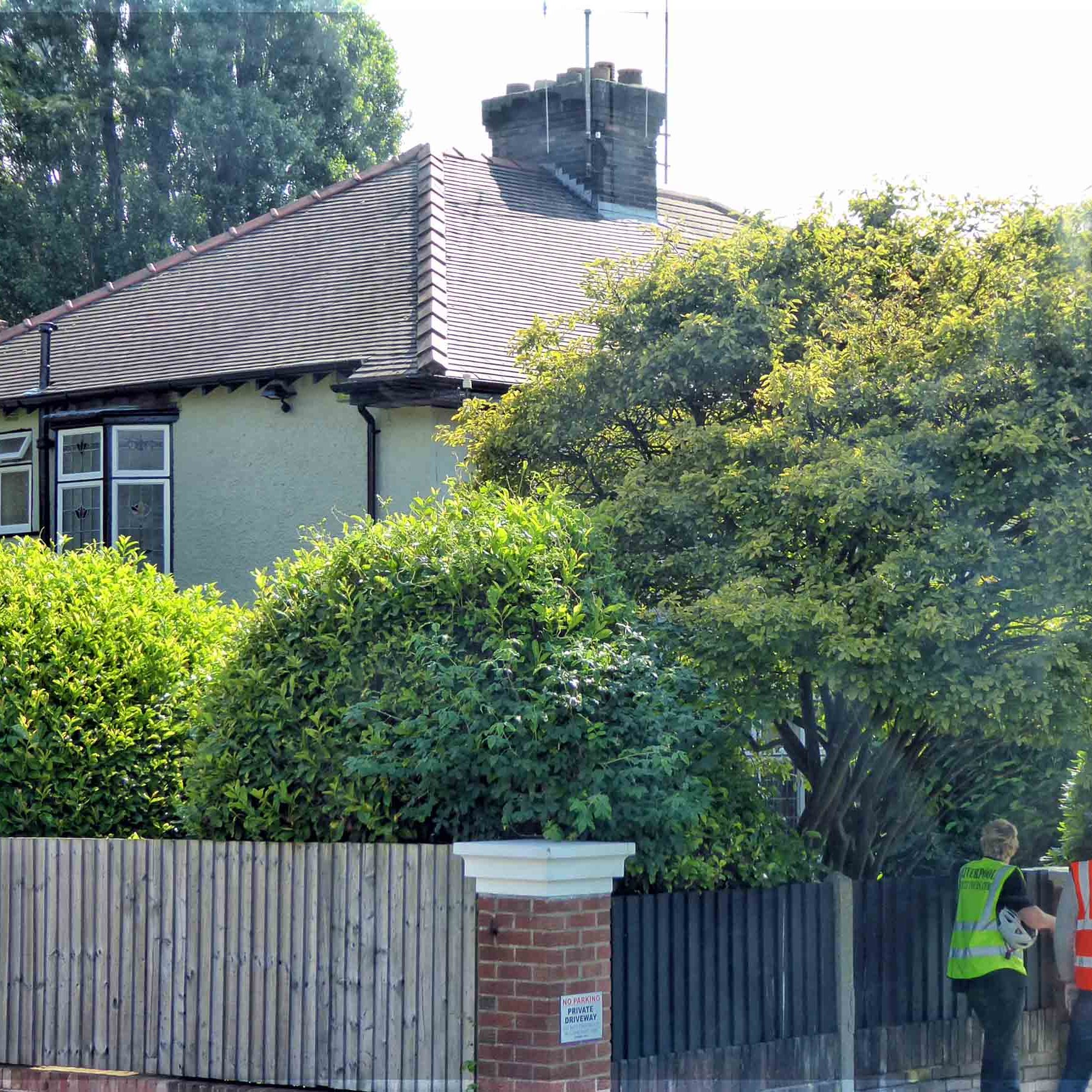 Suburban house with trees and tall hedge