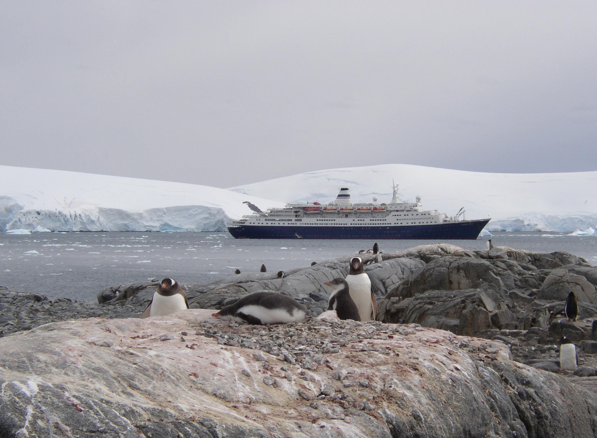 Ship anchored off a rocky coast with penguins
