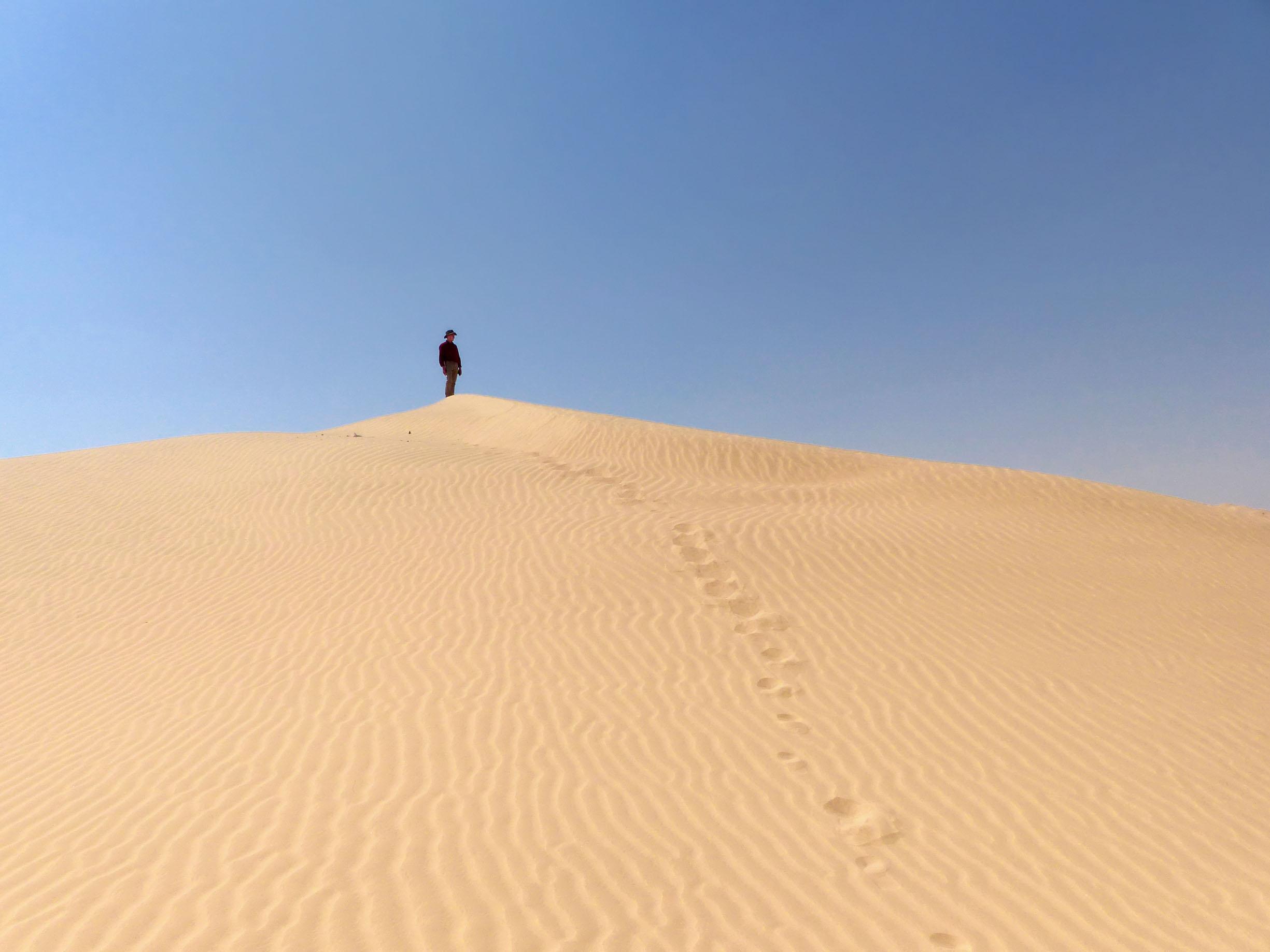 Small figure standing on sand dune
