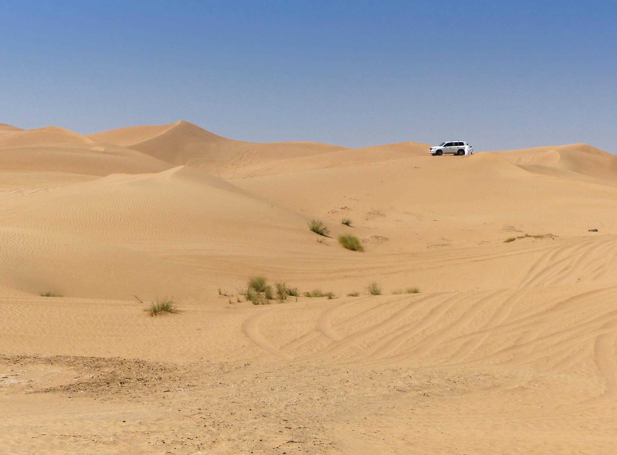 White car on ridge of sand dunes