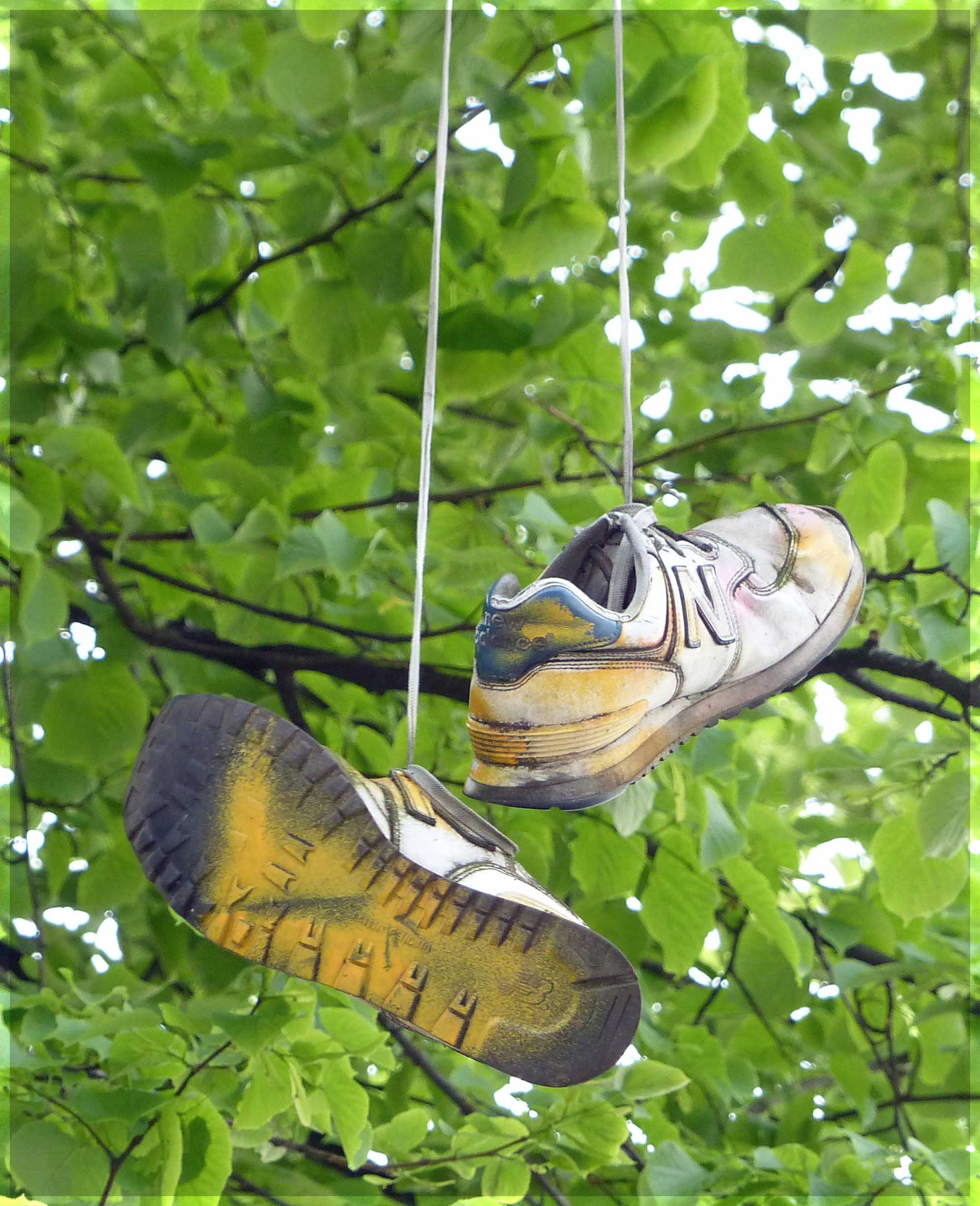 Spray-painted trainers hanging by a tree