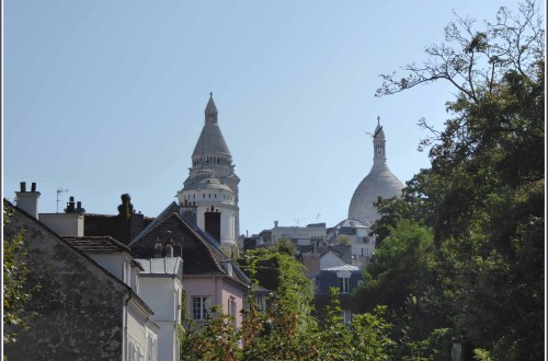 Roof tops, trees and white domes