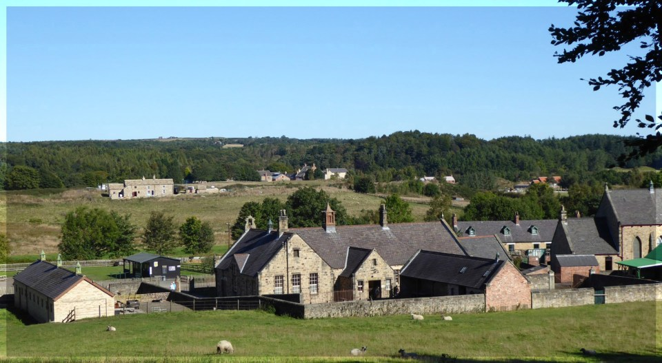View of farmhouse and other buildings