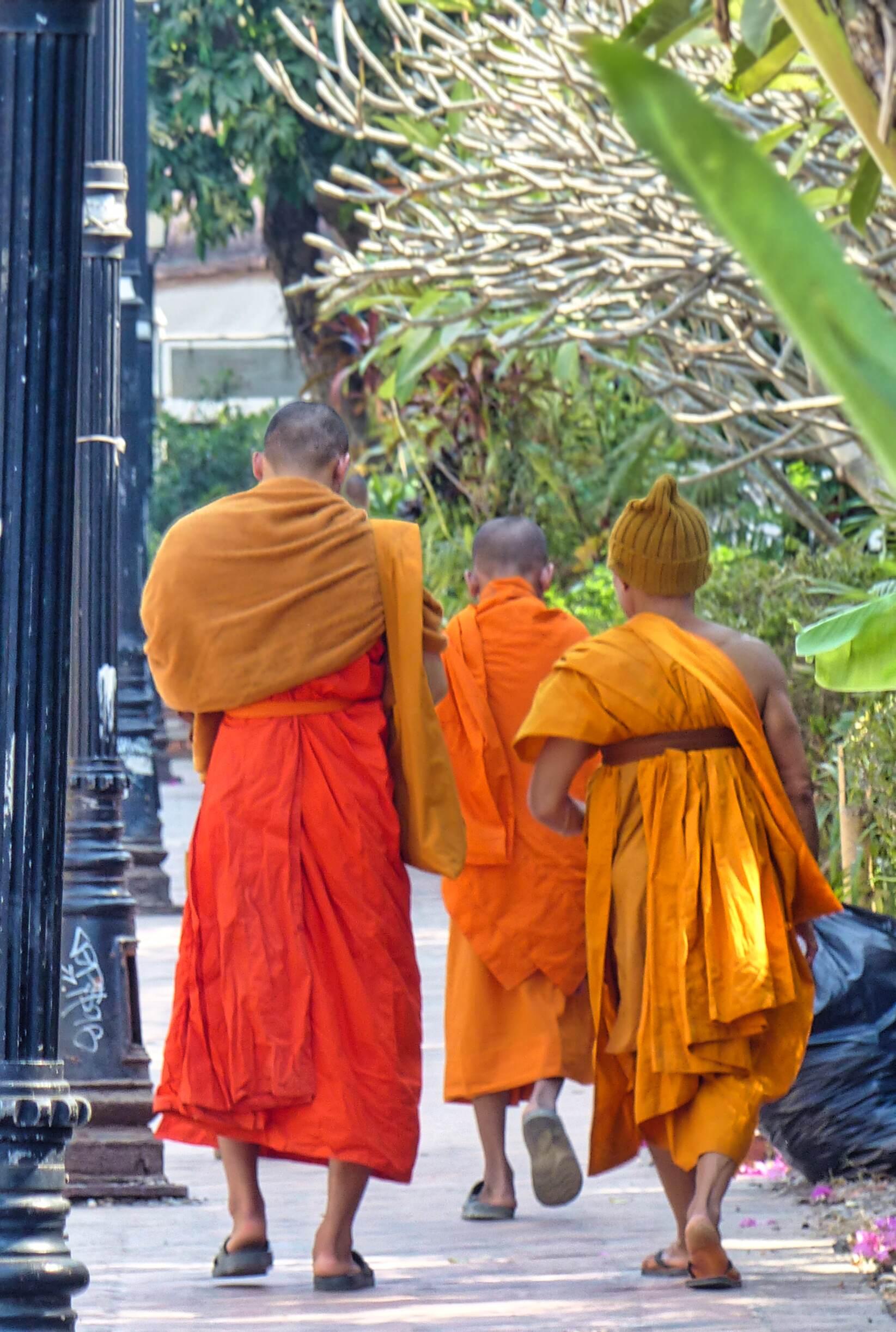 Men in orange robes seen from behind walking down a street